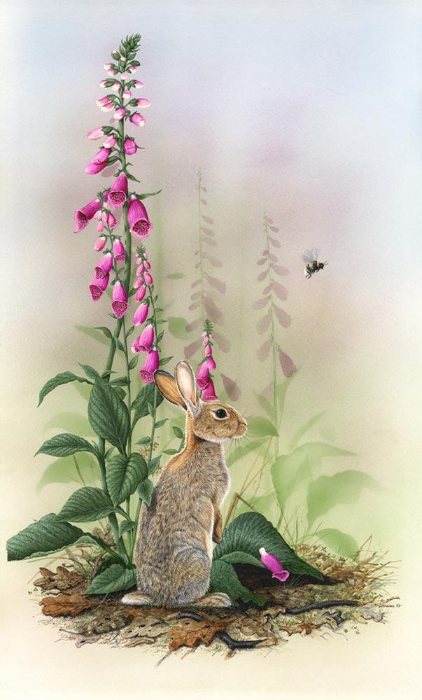 Flora & Fauna (portrait)