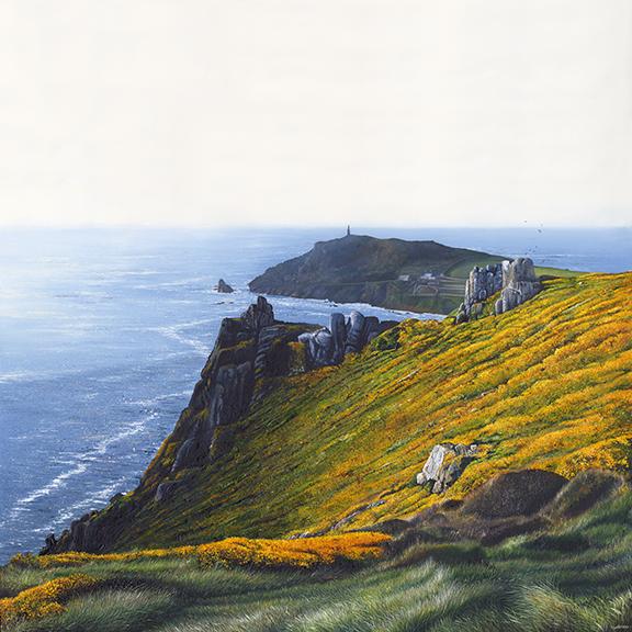 Printn Gorse at the Cape