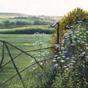 Print Cornish Gate