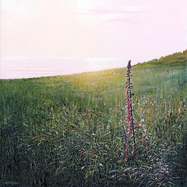 Print Evening Light, Zennor Head