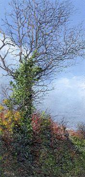 LE758 Sunlit Tree