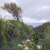 LE822 Path to Polkerris - a detailed print of Polkerris in Cornwall by artist Nicholas Smith