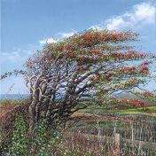 LE827 Winter Berries - a detailed print by artist Nicholas Smith