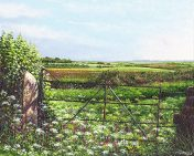 OE15 Cornish Gate - a detailed print by artist Nicholas Smith