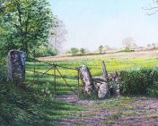 OE22 Buttercup Field - a detailed print by artist Nicholas Smith