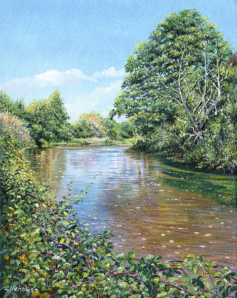 OE13 Sleepy Waters - a detailed print of a Devon river by artist Nicholas Smith